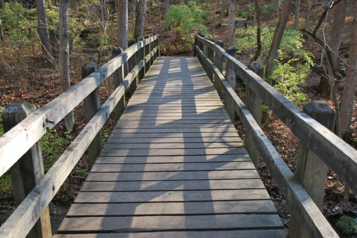 John Bryan State Park is close to the town of Yellow Springs and offers beautiful hiking trails if you're searching for something more adventurous.