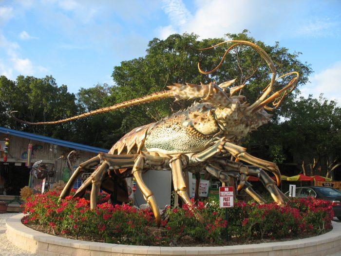 10. Betsy the Lobster, Islamorada