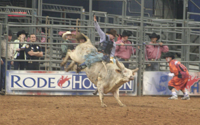 8. The Houston Rodeo attracts a larger crowd than any rodeo in the world.