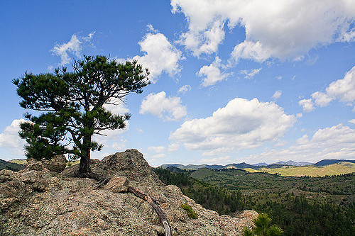 6. Lovers Leap Trail - Custer State Park