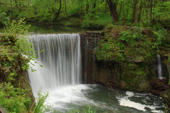 1. Indian Mound Reserve Trails (Cedarville)