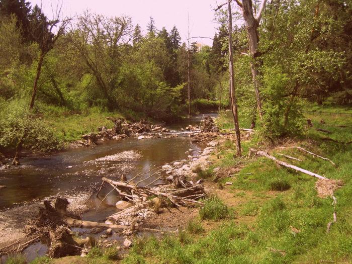 3. Springwater Corridor