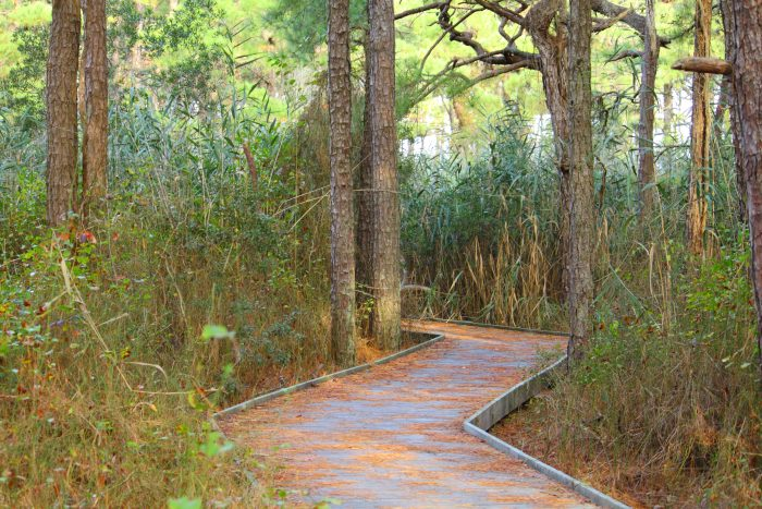 Hiking the nature trails around the park...