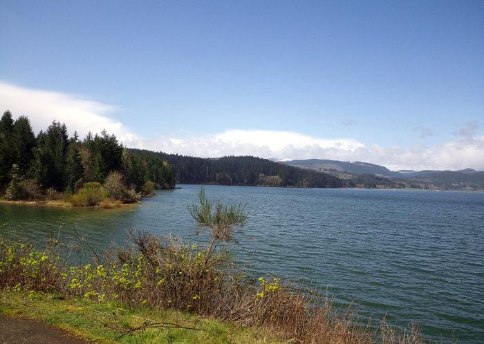 5. Henry Hagg Lake