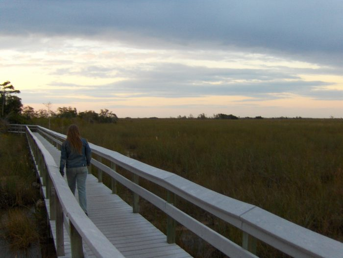 6. Anhinga Trail, Everglades National Park