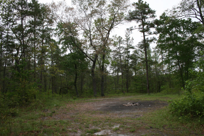 1. Devil's Tramping Ground, North Carolina