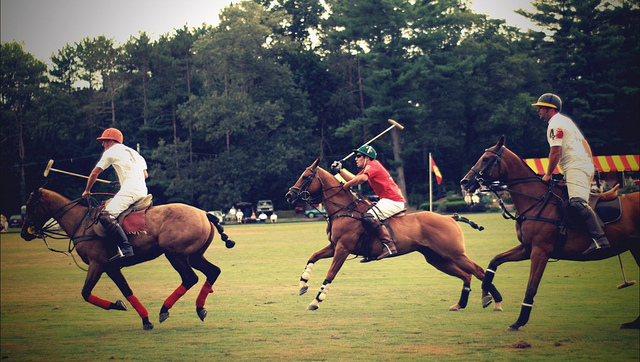 6. The first polo match held in the U.S. occurred in Rhode Island in 1876.