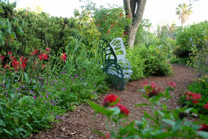 This butterfly bench is a favorite stop in the butterfly garden.