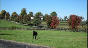 10 Perfect Places in Kentucky For People That Hate Crowds