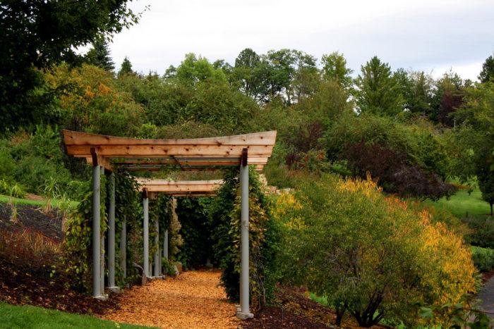 9. Or find your zen in a botanical garden.