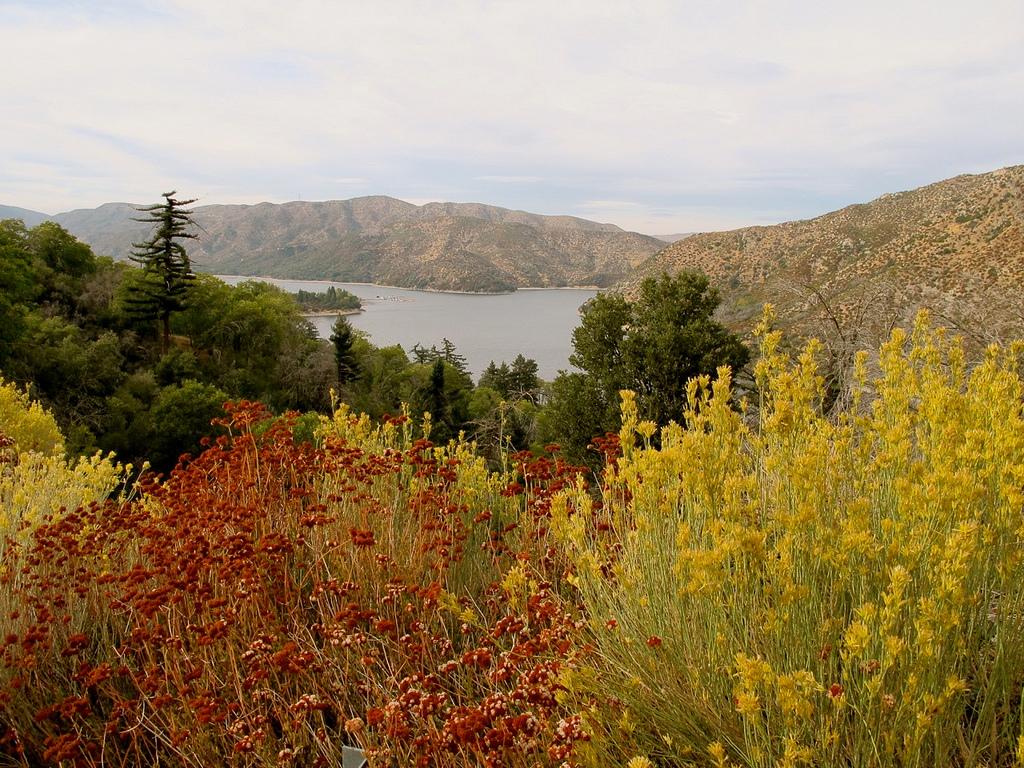 6 Scenic Car Trips In Southern California