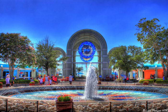 2. SeaWorld San Antonio is the largest marine-life park in the entire world.