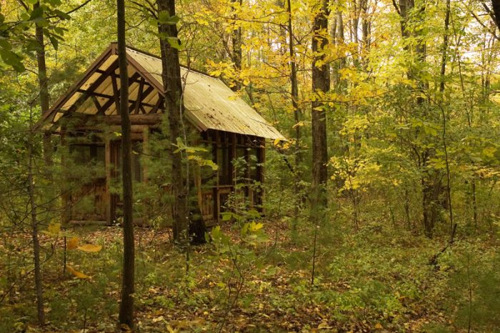The gardens are filled with secret nooks and hideaways, such as this cozy forest shelter.