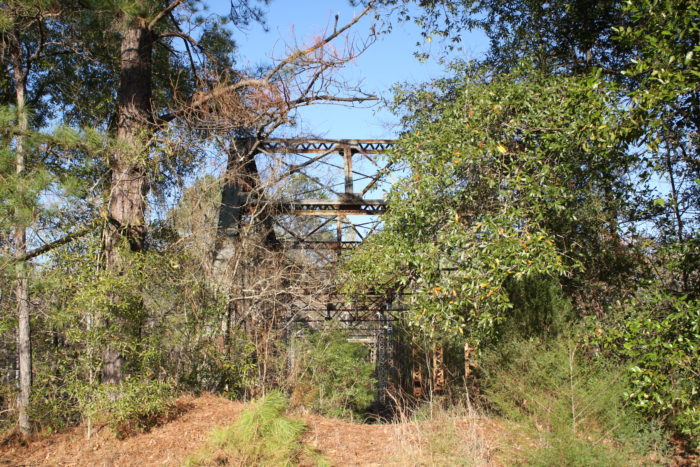 4. On an abandoned section of County Road 421, in Dale County, you might stumble upon this truss bridge that spans over the Choctawhatchee River.