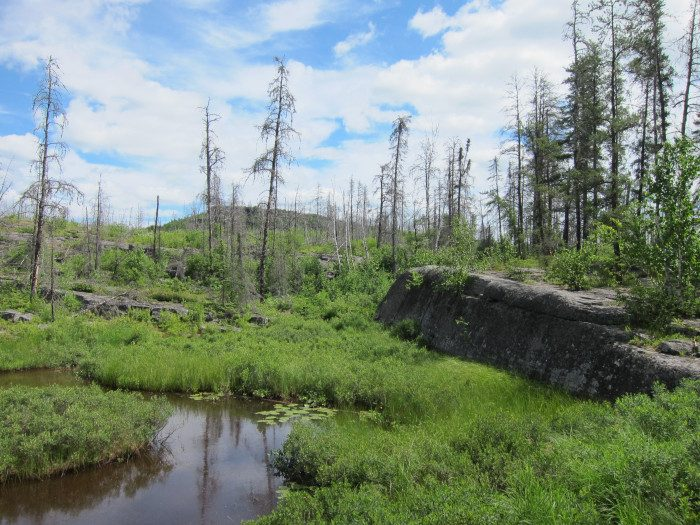1. Magnetic Rock Trail in the BWCA is the perfect place to discover a surprising natural phenomenon, and put your compass to the test in a quiet area.