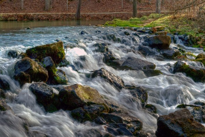 Each day, around 100 million gallons of water flows from the spring.