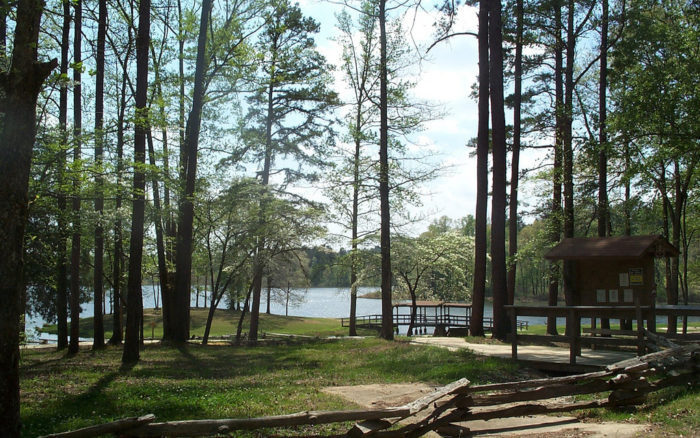 6. Chewalla Lake Recreation Area Trail, Holly Springs