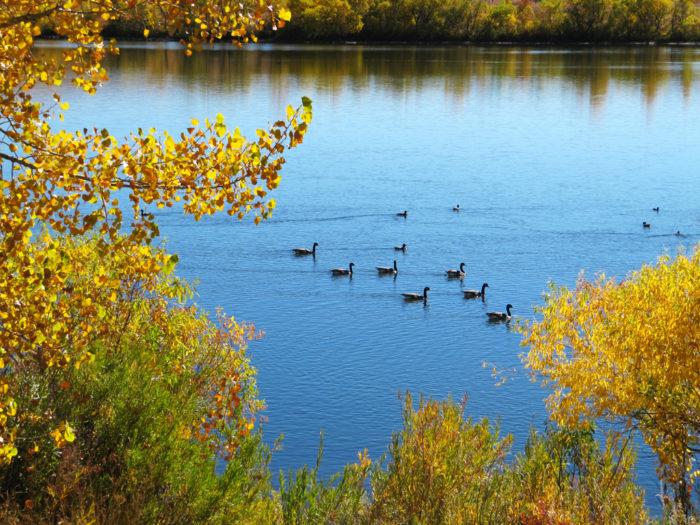 10. Bear Creek Lake Park