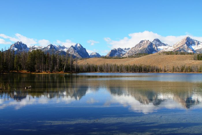 Keep going, and eventually, you'll find yourself at Little Redfish Lake -- the smaller, quieter younger brother to renowned Redfish.