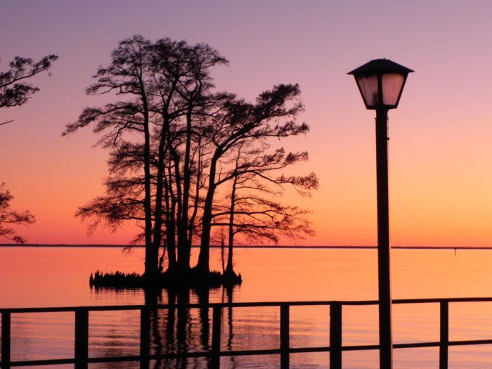 Have you fallen in love with Edenton yet?