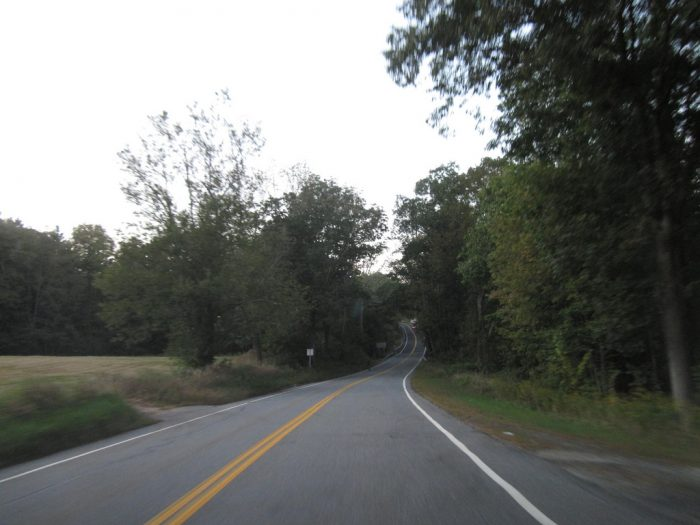 You'll be enveloped by trees as you cruise down the quiet roads.