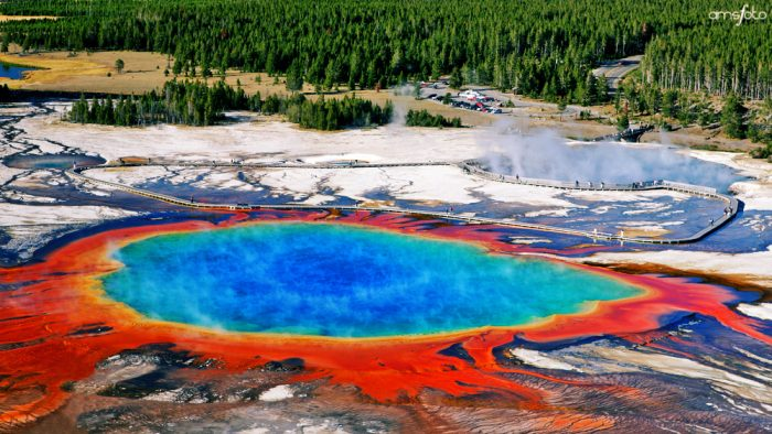 14. Yellowstone Tour