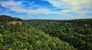 """The """"Grand Canyon Of The East"""" Is Right Here In Alabama… And It's Spectacular"""