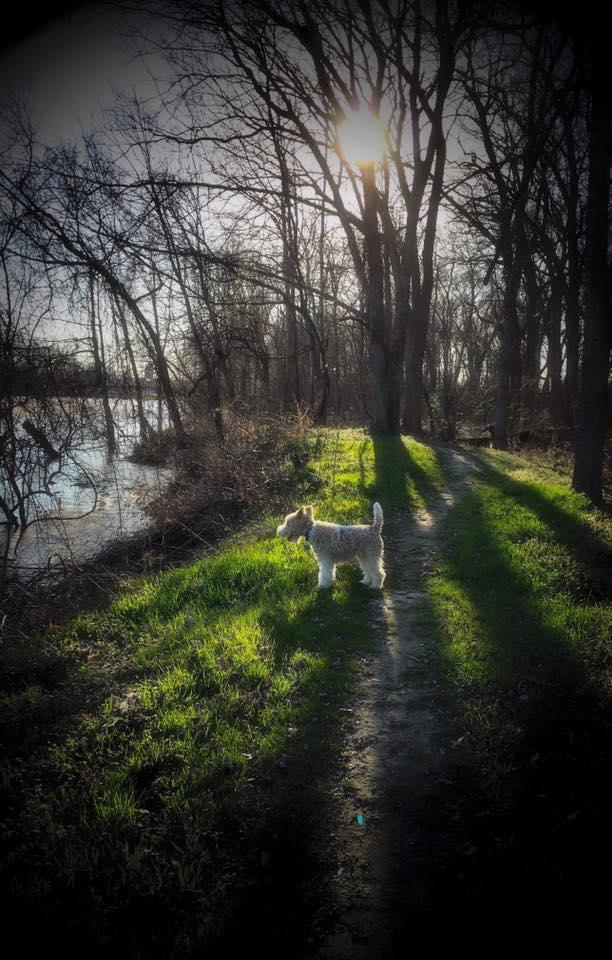 7. Yazoo River Trail, Greenwood