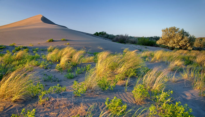 12. Slide down the sand dunes at Bruneau Dunes State Park.