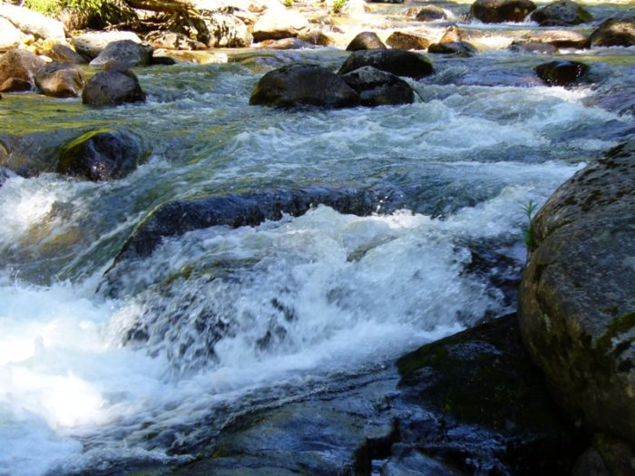 Refreshing streams...
