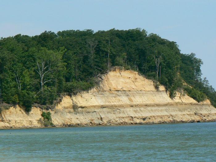 3. Calvert Cliffs