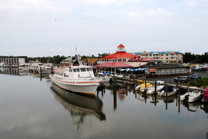 Charters and Tours leave from Fisherman's Wharf all summer long.