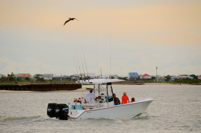 There are so many things to see and do in Dauphin Island. Perhaps you have a love for fishing. Dauphin Island is a great place to fish. As a matter of fact, it's the location for the Alabama Deep Sea Fishing Rodeo -  the largest fishing tournament in the world.