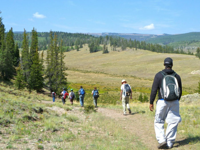 9. Go hiking in a national forest.