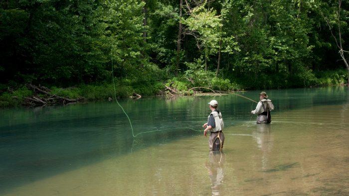 9. Catch a fish.