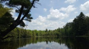 You'll Never Believe What Secrets This Stunning State Park In Pennsylvania Is Hiding