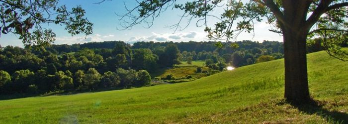 8. Stroud Preserve, West Chester