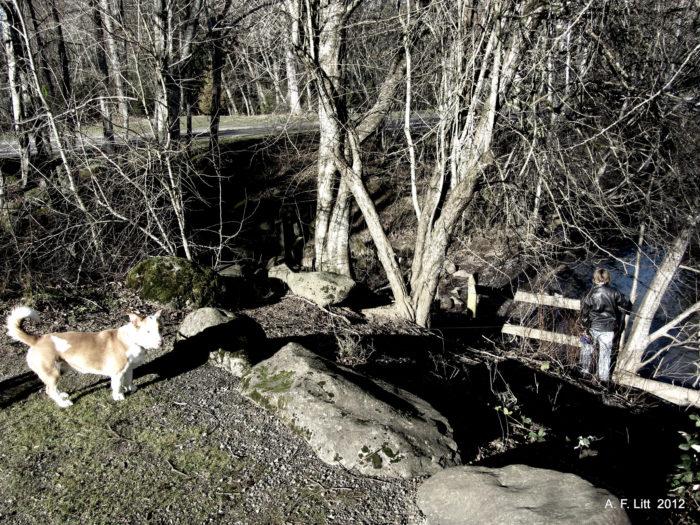 6. Butler Creek Greenway Trail