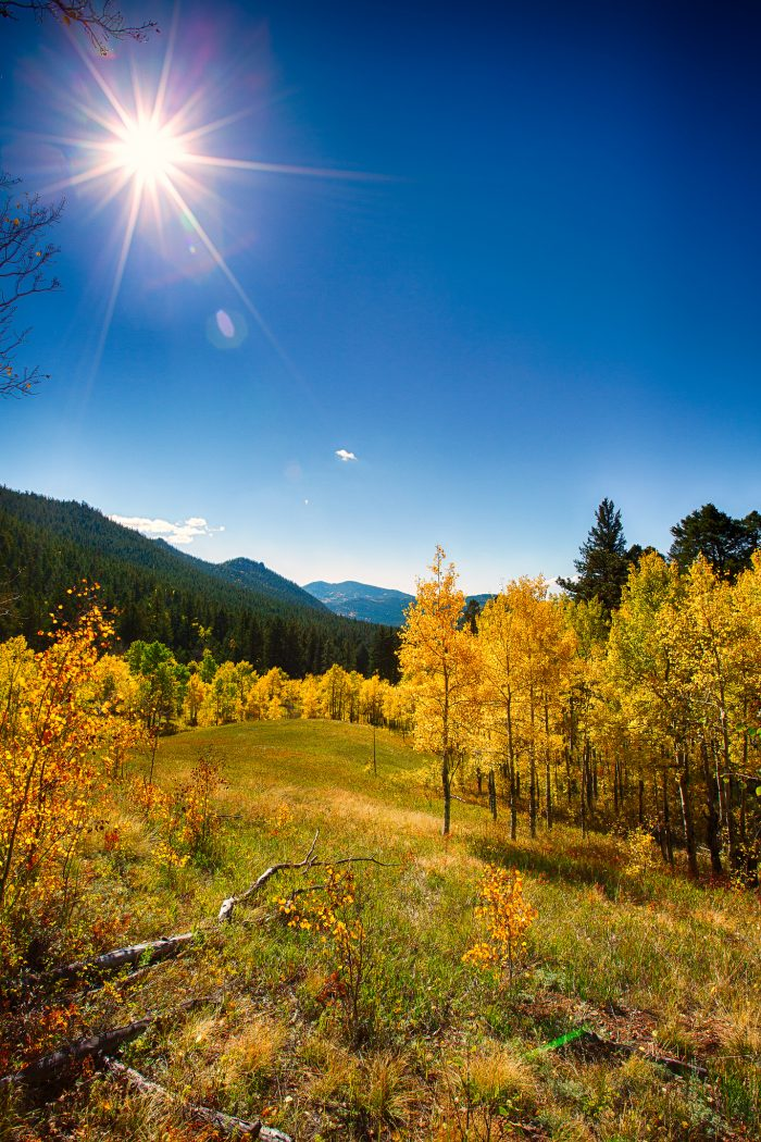 And did I mention how lovely Golden Gate Canyon is in the fall?