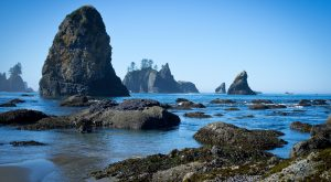 This Little Known Beach In Washington Will Be Your New Favorite Summer Destination