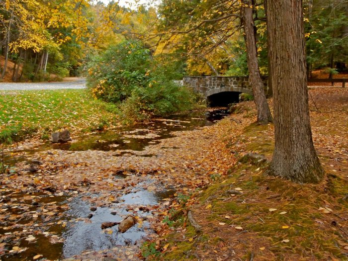 8.  Mount Norwottuck and Horse Caves trails, Mount Holyoke State Park