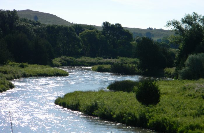 10. ...and rivers, all of which are home to hundreds of fascinating forms of flora and fauna.