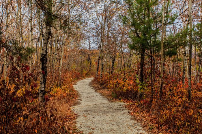 4. While many flock to the views from Enger Tower, the true beauty of wild Duluth can be found in the trails winding behind it around the hills. You can enjoy a nice secluded walk if you head west out of Enger Park.