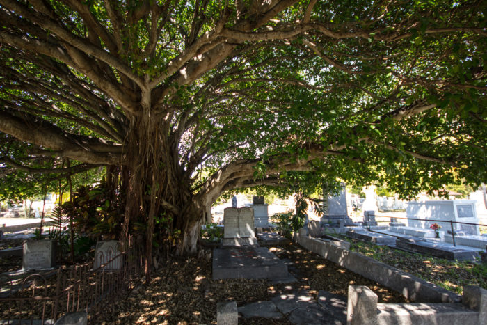 10. Key West Cemetery, Key West