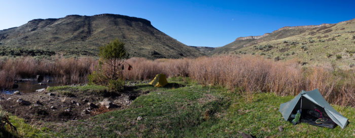In the spring, this area is awash in colorful desert wildflowers and  surprisingly green old-growth juniper - a uniquely lush landscape that few people take the time to visit.