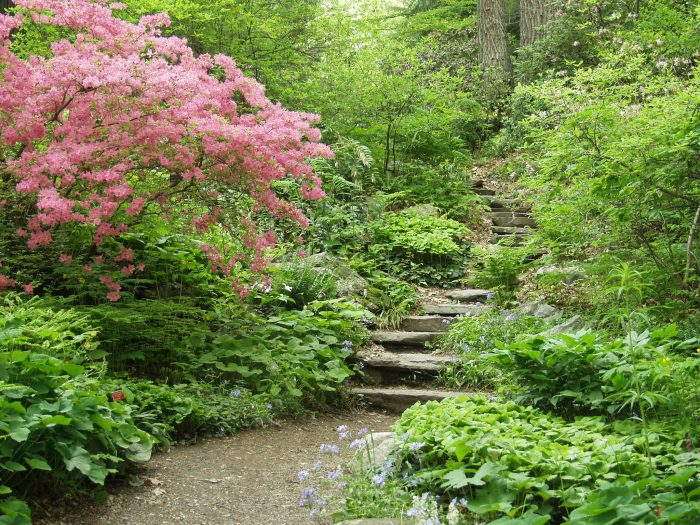 The dense foliage and flowering plants almost completely insulate visitors from the sound of the outside world.
