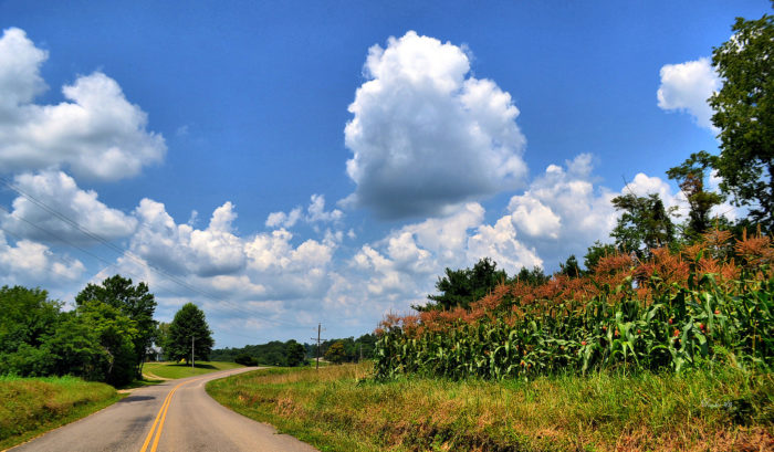 7. When you need to clear your head, drive the back roads. You'll be pleasantly surprised how much it will refresh you.