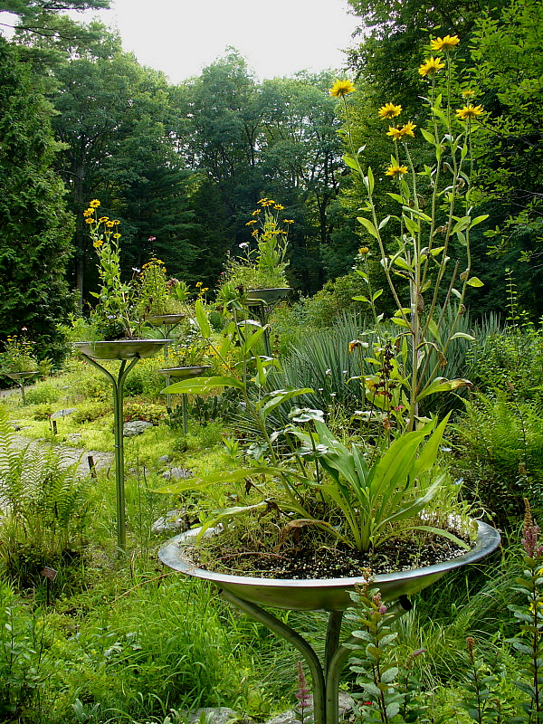 As if the greenery on the ground wasn't enough, silver saucers filled with flowers are dotted around the garden.