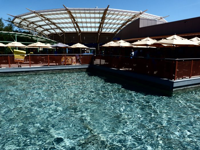 9. Mystic Aquarium (Mystic)