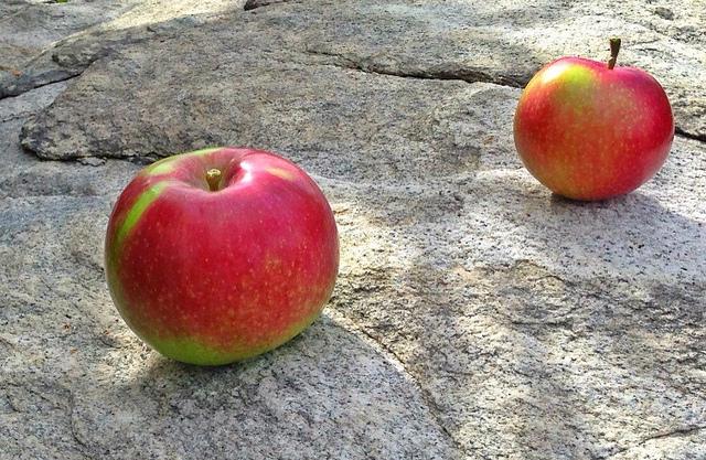 10. Apples